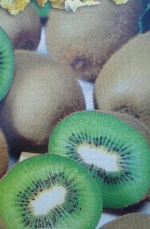 kiwi hayward hembra planta frutal